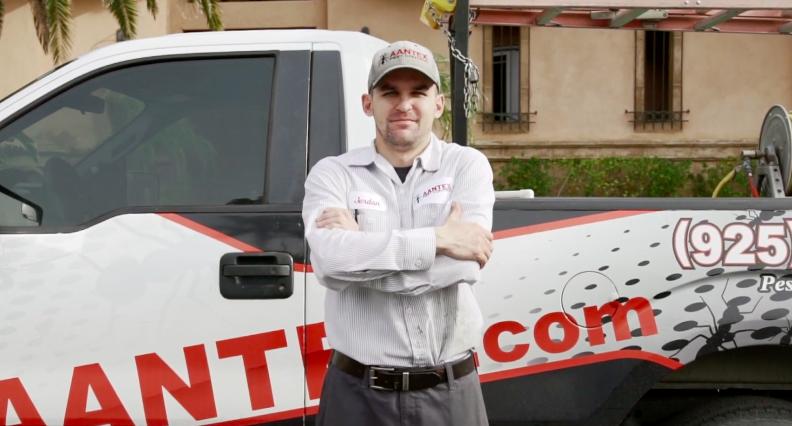Aantex Pest Control - Bay Area Brentwood